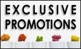 Exclusive Promotions at Total Body Care